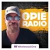 Heartbreaker Blues from Ep 54 Opie Radio