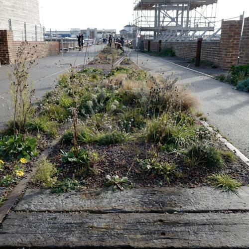 Silence #94: Folkestone Harbour