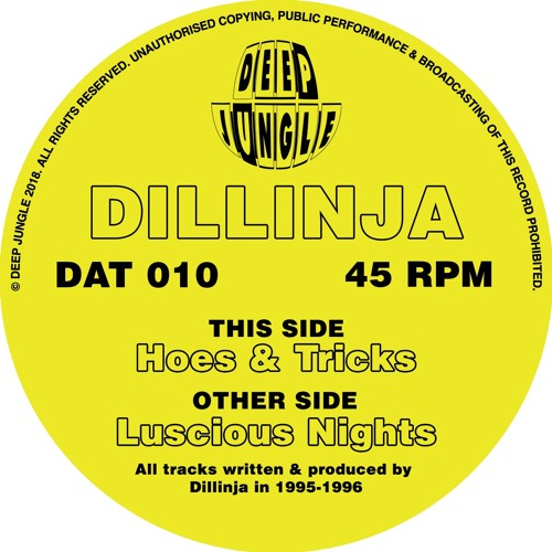 Dillinja - Hoes & Tricks - AA - DAT010 - low quality 128 clip
