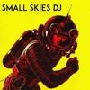 Small Skies DJ set