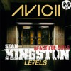 Avicii VS. Sean Kingston - Beautiful Levels (DJM Mashup) *FREE NON FILTER  DOWNLOAD*
