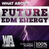 Future EDM Energy | 3,2 GB Of FL Studio Templates, Melodies, Drums & More!