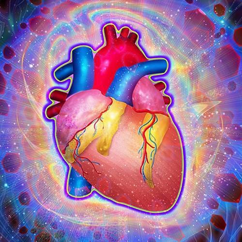 love.capacitor