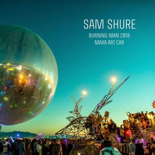 Sam Shure - Burning Man 2018 - Maxa Art Car