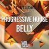Progressive House Belly | FL Studio Template (+ Samples, Stems & Sylenth1 Presets)
