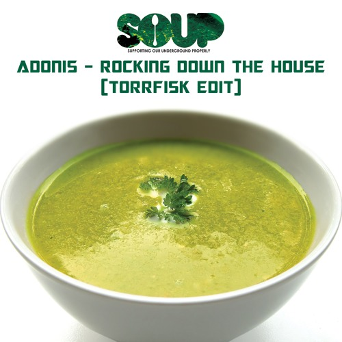 ADONIS - ROCKING DOWN THE HOUSE (TORRFISK REMIX) [SOUP] FREE DOWNLOAD