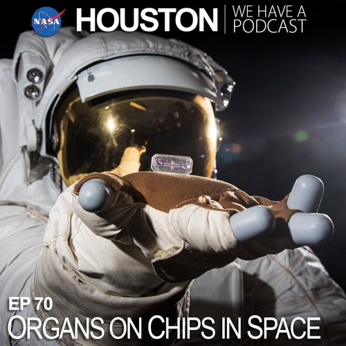 Organs on Chips in Space
