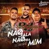 Dj Luciano Feat Humberto E Ronaldo - Não Fala Não Pra Mim Feat. Jerry Smith Portada del disco