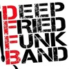Deep Fried Funk - Get Ur Freak On / Humpty Dance / Sex Machine / Superstition