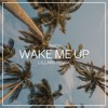 Download Wake Me Up (Madilyn Bailey Cover) [Lillard Remix] Mp3