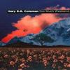 The Sky Is Crying - Gary B.B Coleman