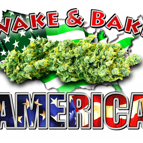 Wake & Bake America 740 Part 2 Preventing Fungus Gnats, More Light More Yield & The Extractcraft