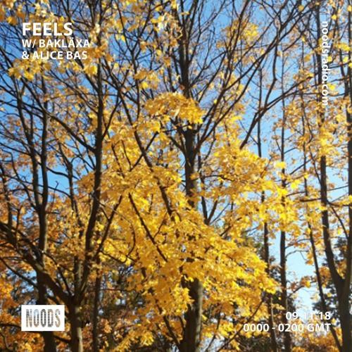 Noods Radio -  Feels guestmix w/ Alice Bas