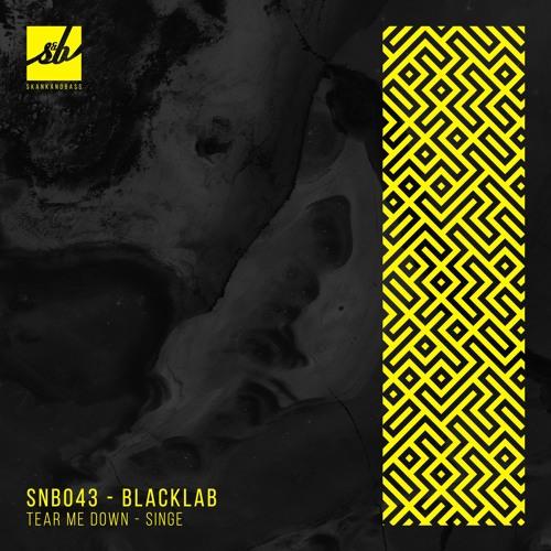 Blacklab - Tear Me Down / Singe 2018 [EP]