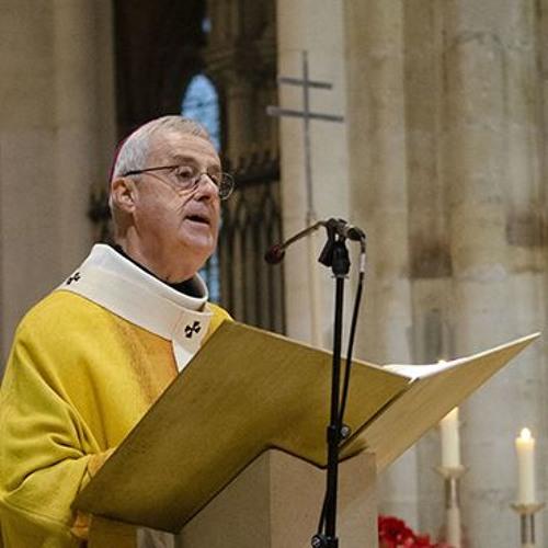 L'homélie de Mgr Aubertin pour la saint Martin 2018