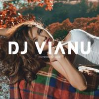 Beautiful Chill Deep House Music Mix 2019 - Mixed By Dj Vianu - November 2018