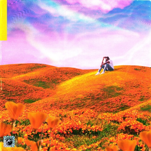 Rexx Life Raj & Kyle Betty - California Poppy