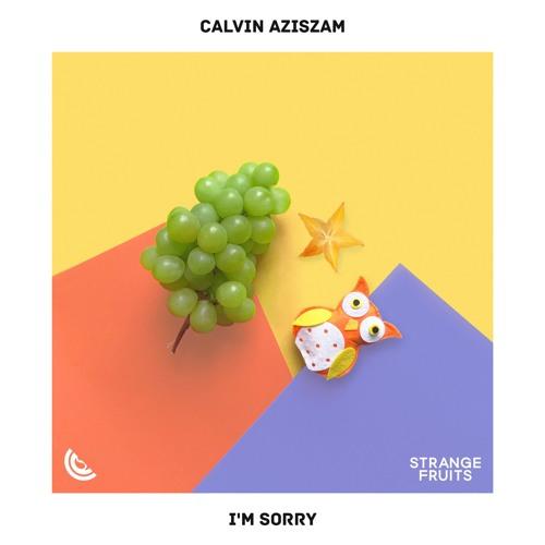 Calvin Aziszam I'm Sorry