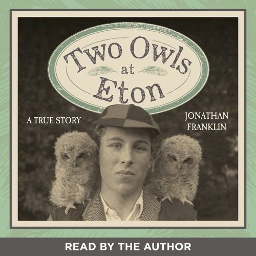 Two Owls at Eton Audio Extract
