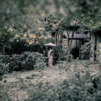 Orange Wiggler - Into The Garden