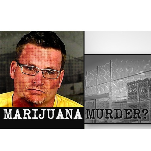 Insight: Marijuana Murder?