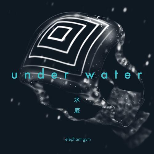 Elephant Gym - Underwater
