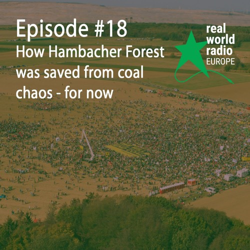 How Hambacher Forest was saved from coal chaos – for now