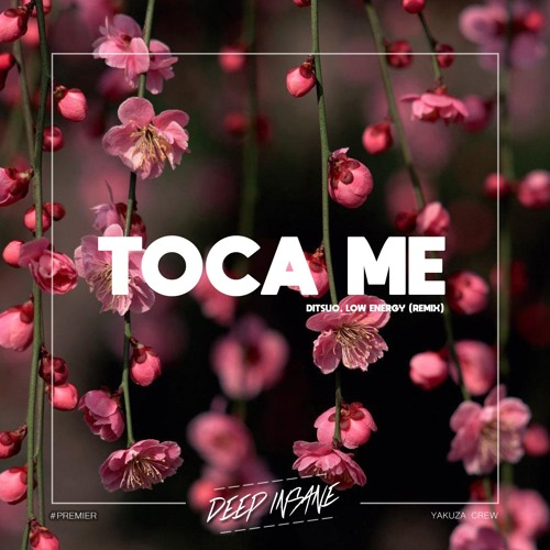 DITSUO & LOW ENERGY - Toca Me (Remix) [FREE DOWNLOAD]