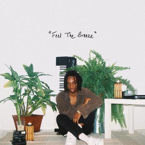 Feel The Breeze - Flwr Chyld x Nai Br.XX