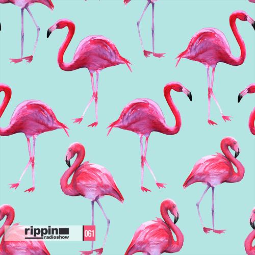 Rippin Radio 061 (Revolution 935 Miami)