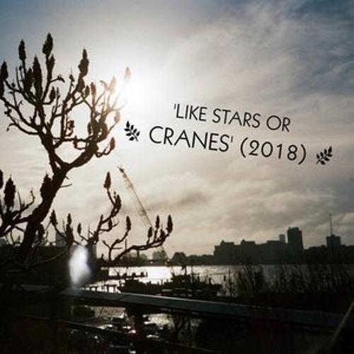 """like stars or cranes"""