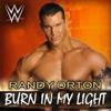 Burn In My Light (Randy Orton)