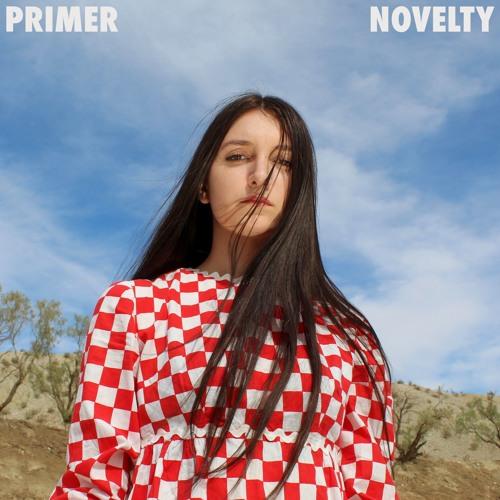 Primer - A Broken Person's Game