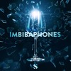 Marie - Anne Fischer - Sonic Reflections (Naked) - Soundiron Imbibaphones
