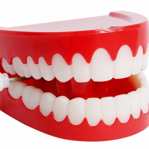 The Truth is in the Tooth: Braces, Cavities, and the Paleo Diet