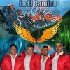 En El Camino - Los Compas de La A (Cover)