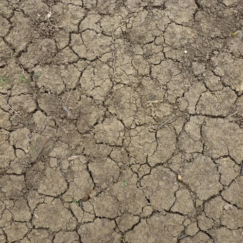 Who'd Have Thought That? About Drought