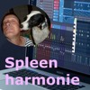 Spleen harmonie