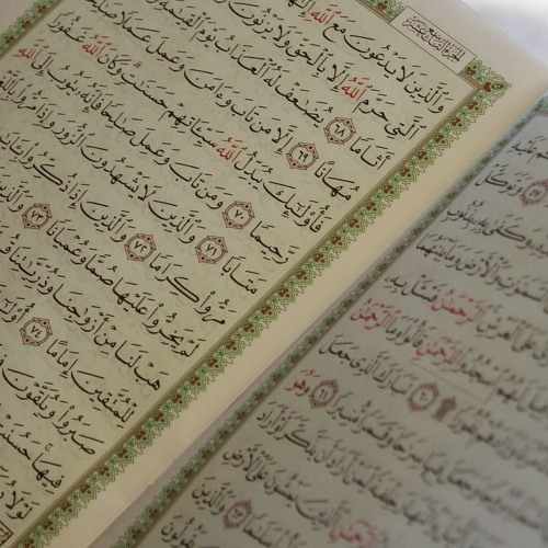 Swiss Up! - Islam: from the 10th century to modern day