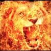 Lion Mode Reconstruction
