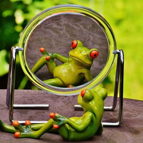 """S1 - E10 """"vi ser oss selv i speilet"""""""