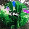 GBF - AH