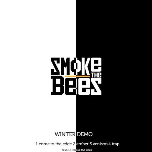Winter demo