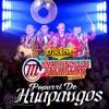 Los Martincillos Al Millon - Popurri De Huapangos Mix 2018