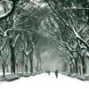 Miss Sarajevo Christmas - George Michael - Instrumental (Lyrics Below)