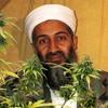 Three 6 Mafia - Bin Laden Weed (FAST)