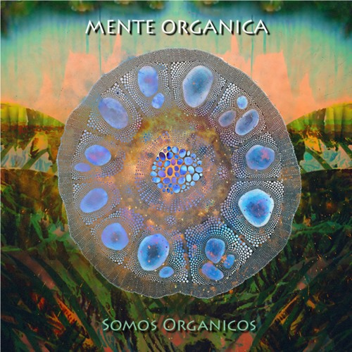 Mente Organica - Taita Inti (Anton Feine & Colour Your Mind Remix)