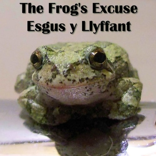 The Frog's Excuse / Esgus y Llyffant