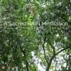 A Sacred RAIN Meditation