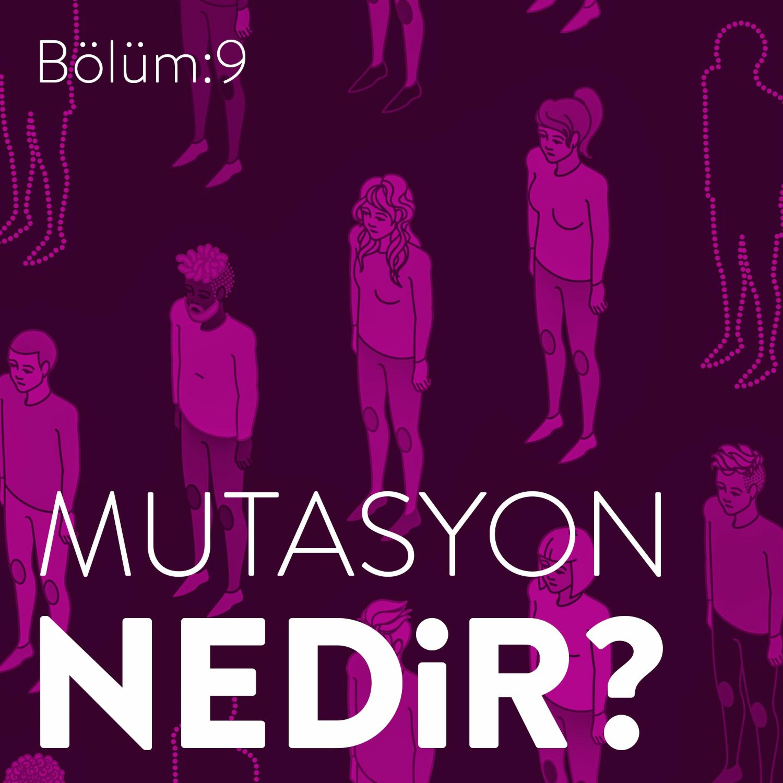 #9: Mutasyon Nedir? Nasıl Meydana Gelir?